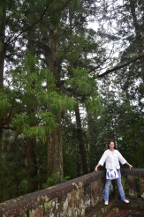 4.Nikko Toshogu szentély27
