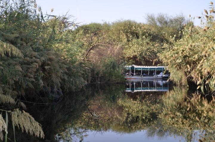 B26 Nile