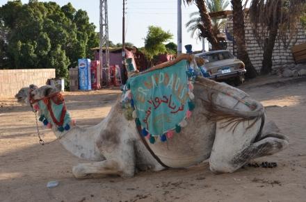 B37 Nubian village