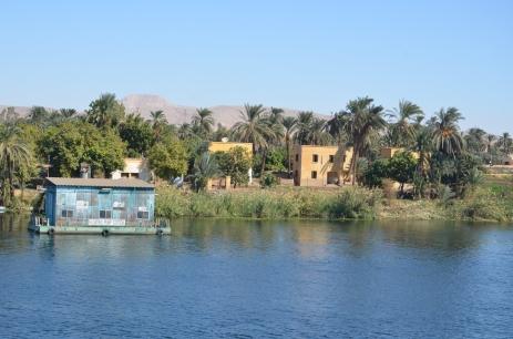 D4 Nile